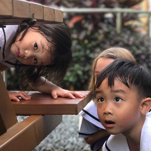 Pegasus International Preschool Enrolment