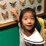 Pegasus International Preschool - best kindergarten singapore Kindergarten Two
