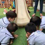 Pegasus International Preschool - best preschool Singapore